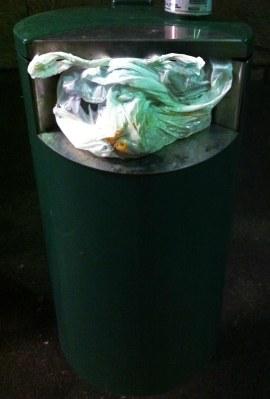 trash can pig small.jpg