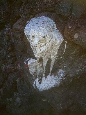 White animal.jpg